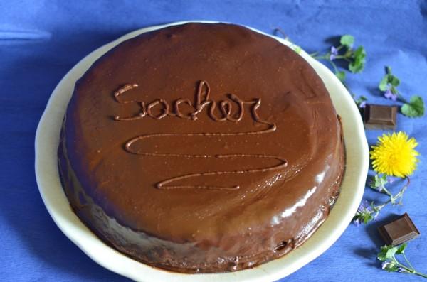 Tort Sacher12