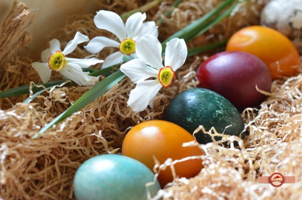 oua vopsite natural9